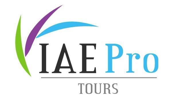 IAE Pro